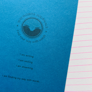 Blue notebook my way with words Orla Kelly article